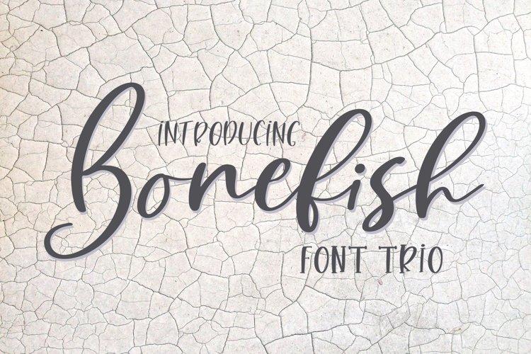 Web Font Bonefish Font Trio example image 1