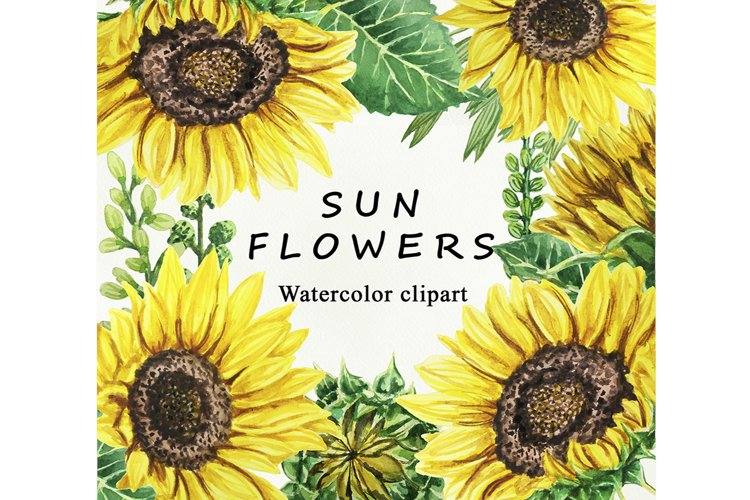Sunflower Watercolor clipart. Separate elements example image 1