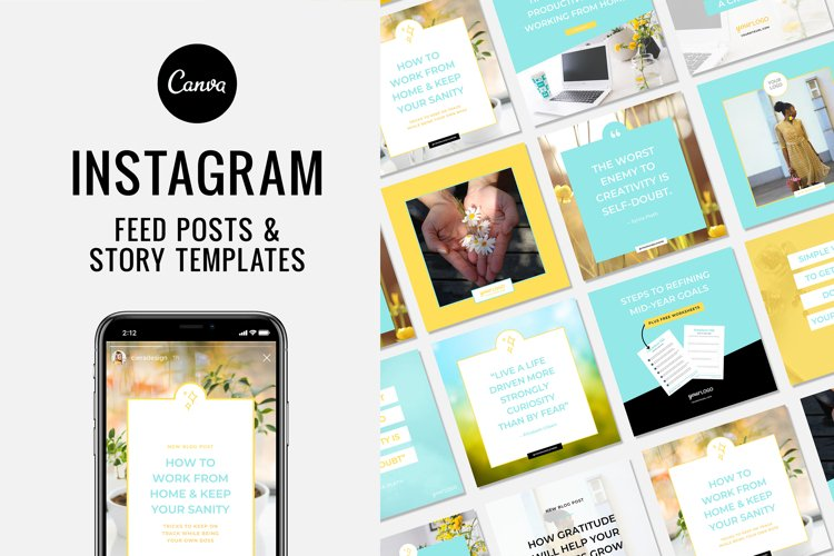 Instagram Canva Template for Feed and Story