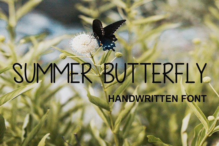 Summer Butterfly example image 1