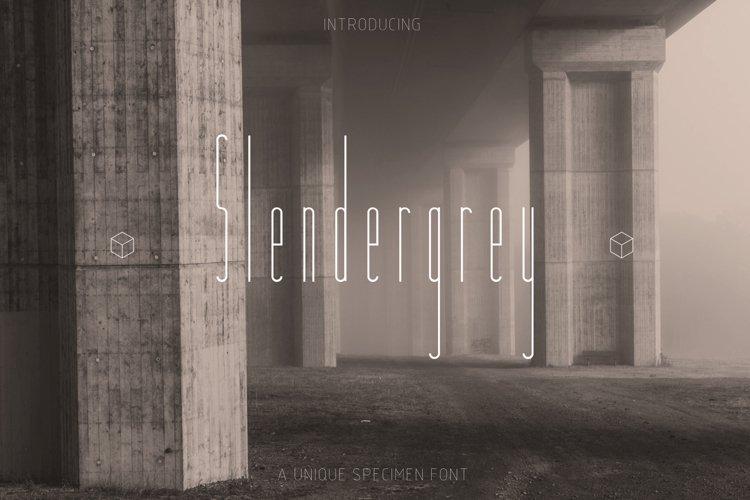 Slendergrey example image 1