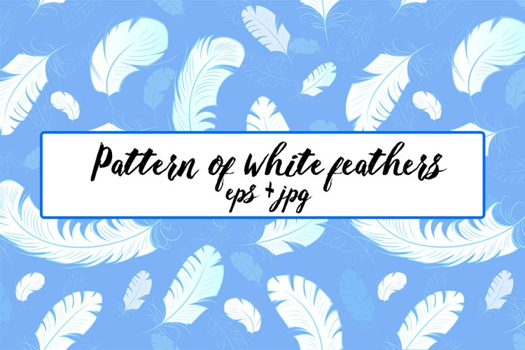 Pattern of White Feathers example image 1