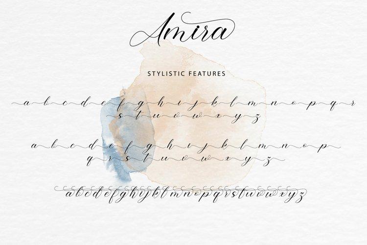 Amira example 5