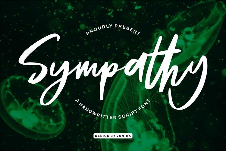 Web Font Sympathy - A Handwritten Script Font example image 1