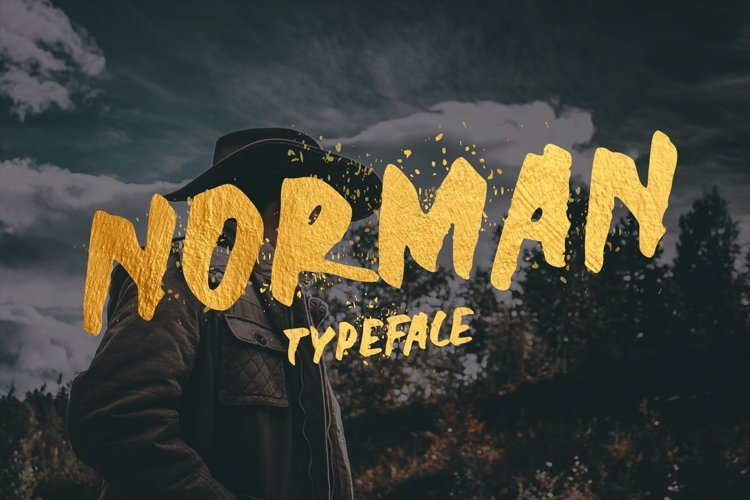 Norman Display Font example image 1