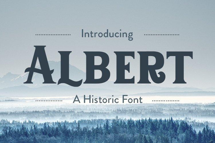 Albert example image 1