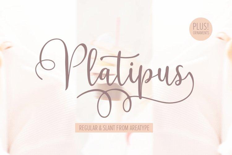 Platipus Script example image 1