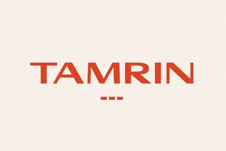 TAMRIN - Modern Sans Font example image 1