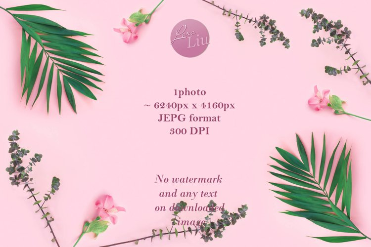 Green plants summer concept template for your text or design