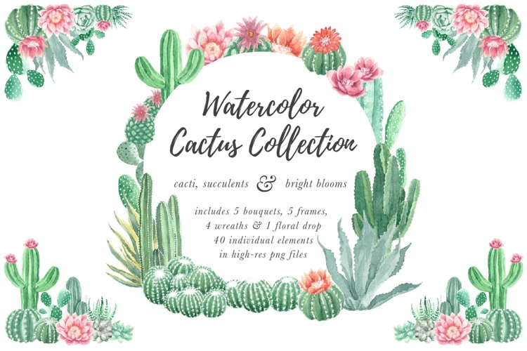 Watercolor Cactus and Succulents Collection example image 1
