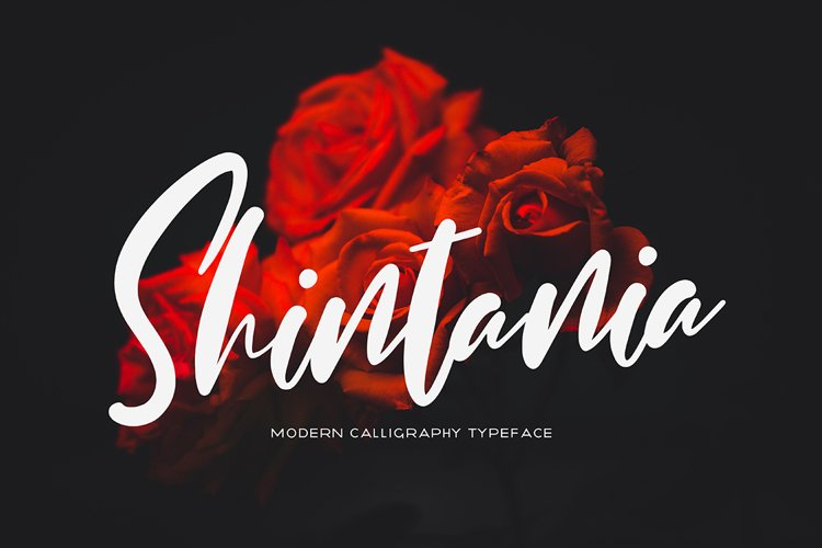 Shintania example image 1