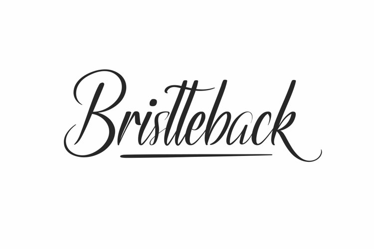 Bristteback example image 1