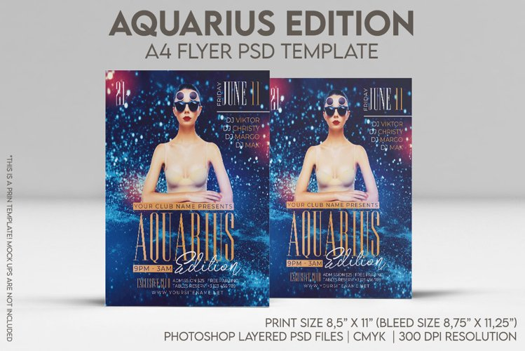Aquarius Edition A4 Flyer PSD Template example image 1