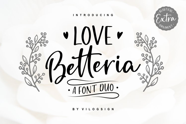 Love Betteria a Lovely Font Duo example image 1