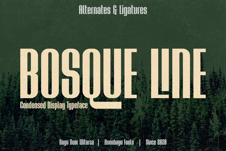Bosque Line - Condensed Display Fonts example image 1