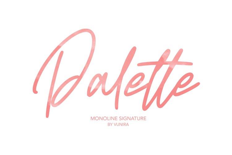 Palette | Monoline Signature Font example image 1