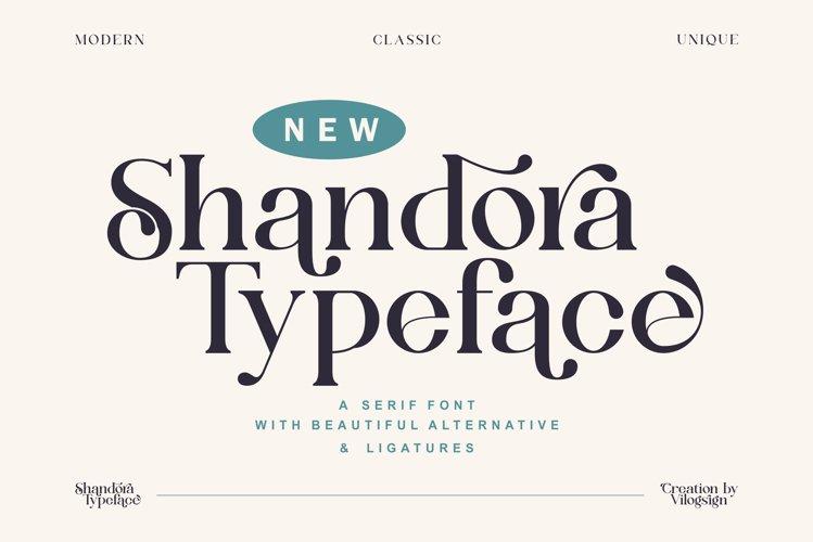 Shandora a Modern & Classy Serif Font example image 1