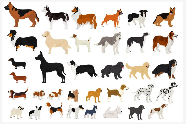 Set of dog breeds. Silhouettes of dogs.