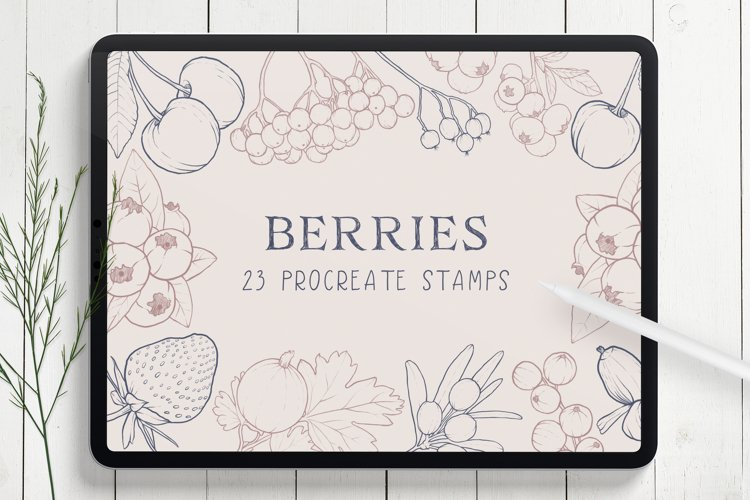 Berries Procreate Stamp Brushes