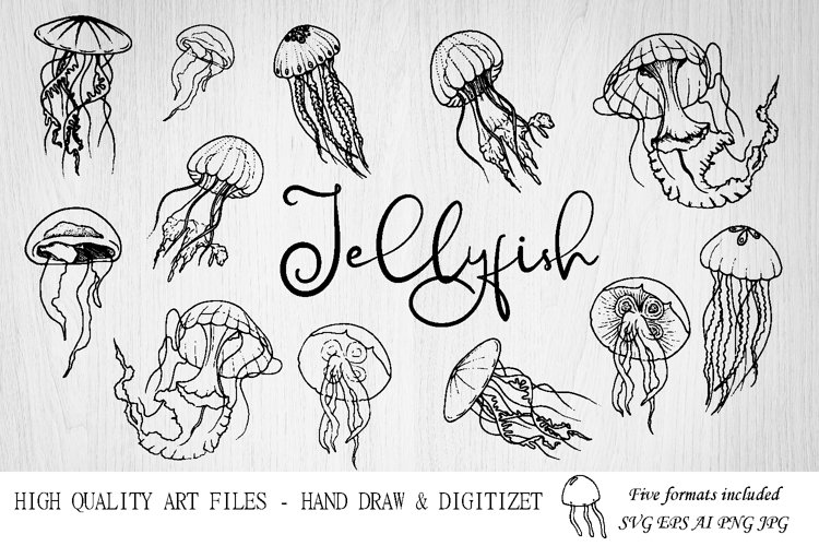 Jellyfish SVG.Ocean svg.Under the sea. Jellyfish clipart