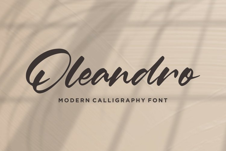 Oleandro Modern Calligraphy Font example image 1
