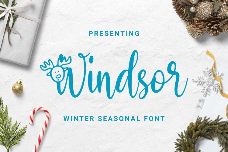 Windsor Font example image 1