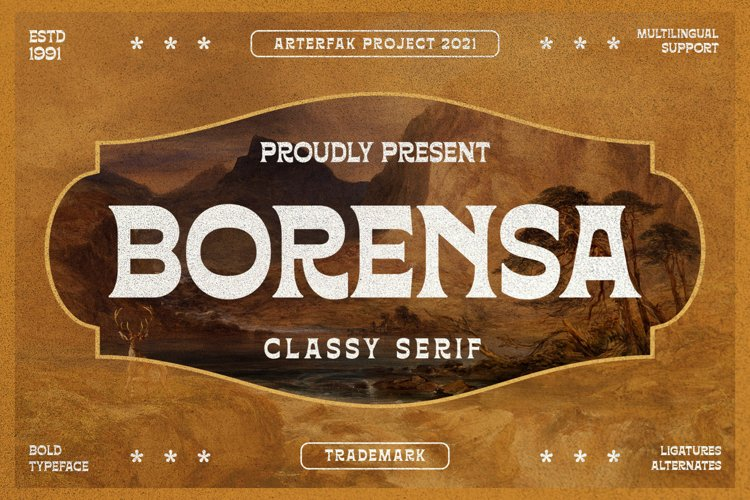 Borensa example image 1