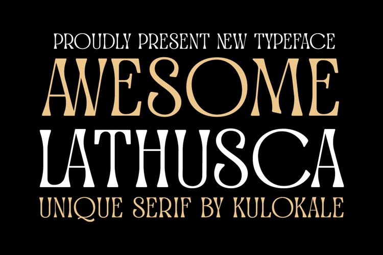 Classic Display Serif Font - Awesome Lathusca example image 1