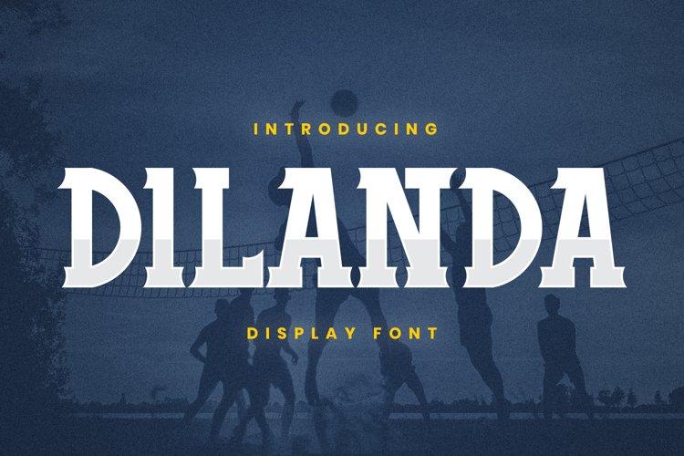 Dilanda Font example image 1