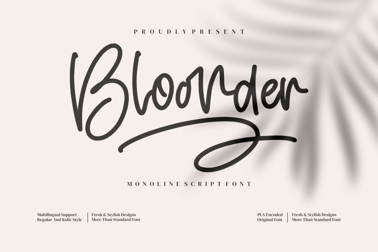 Bloonder example image 1
