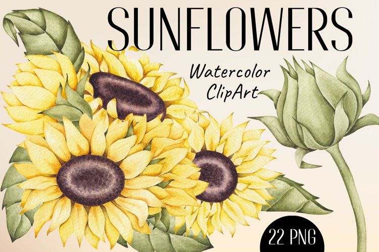 """Watercolor ClipArt """"Sunflowers"""