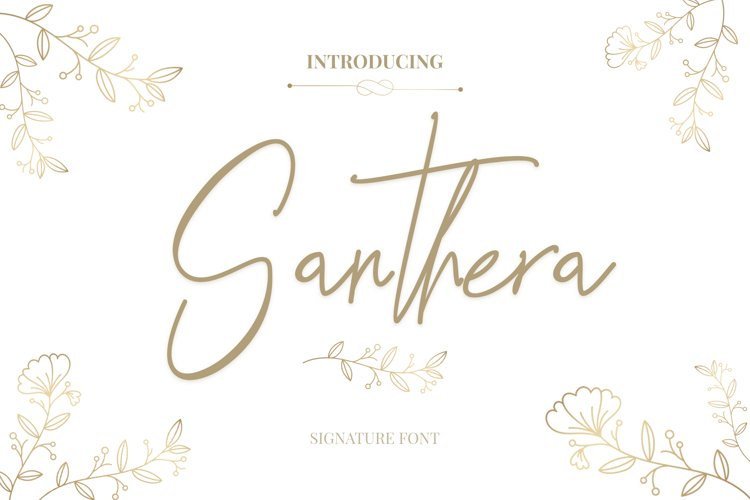 Santhera example image 1
