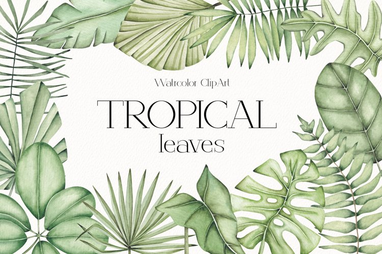 """Watercolor ClipArt """"Tropical Leaves"""" example image 1"""
