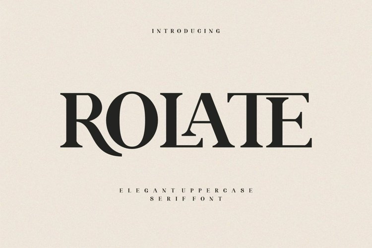 ROLATE Ligature Serif Typeface example image 1