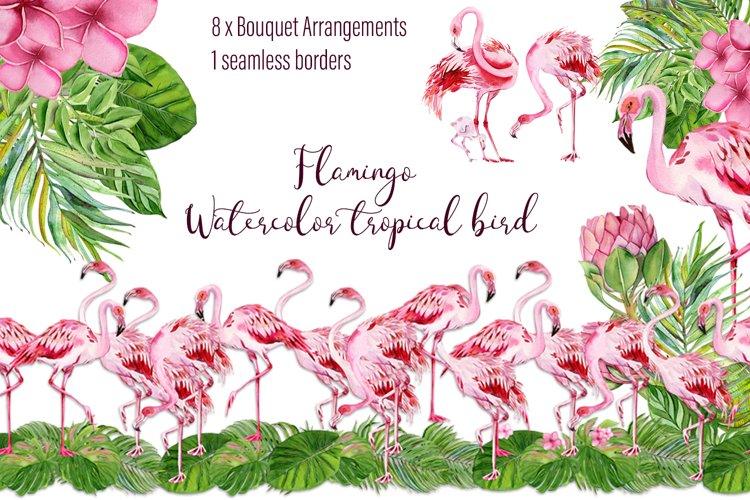 Tropical flamingo clipart - watercolor birds