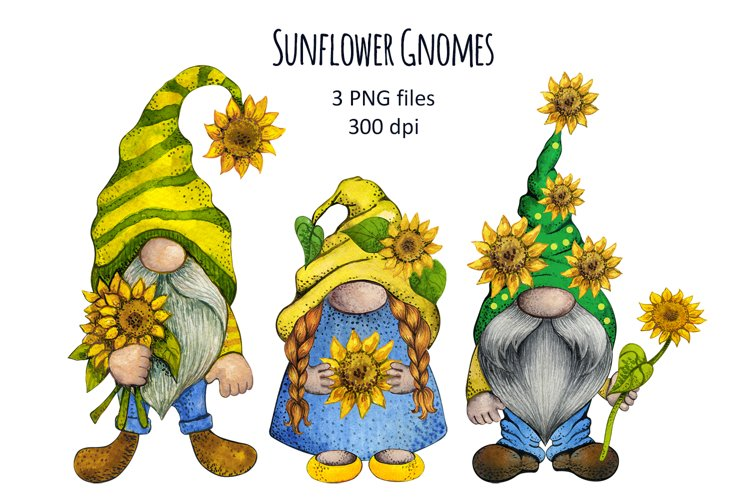 Watercolor Sunflower Gnomes Clipart set png, Fall Flowers