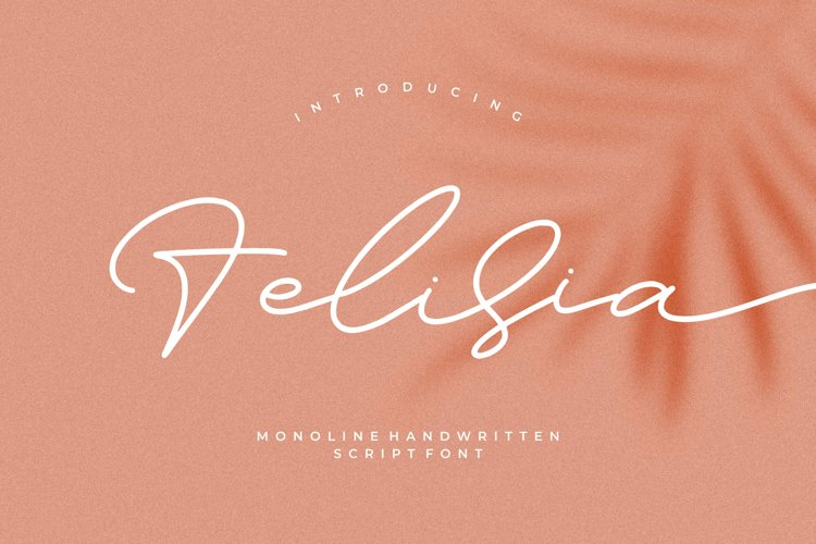 Felisia - Monoline Script Font example image 1