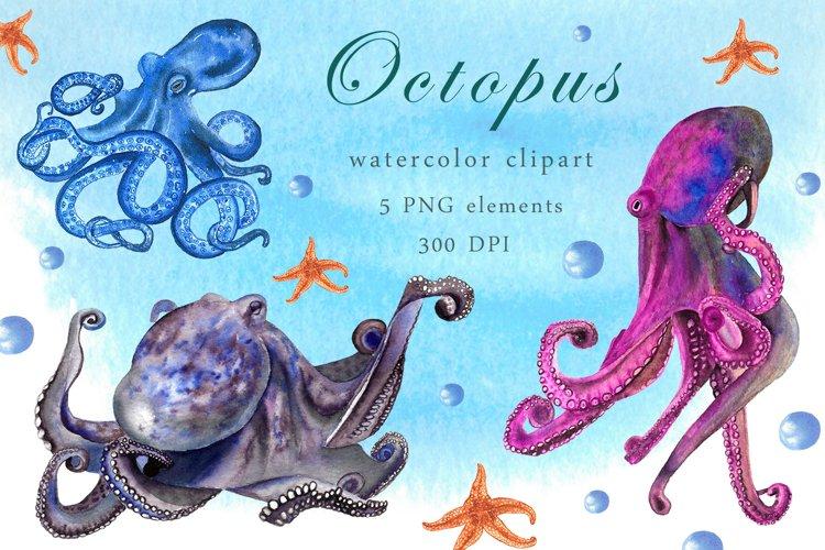 Watercolor octopus clipart