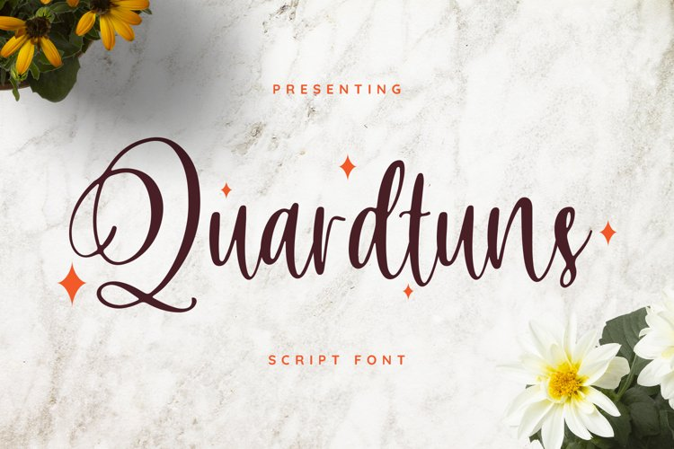 Quardtuns Font example image 1
