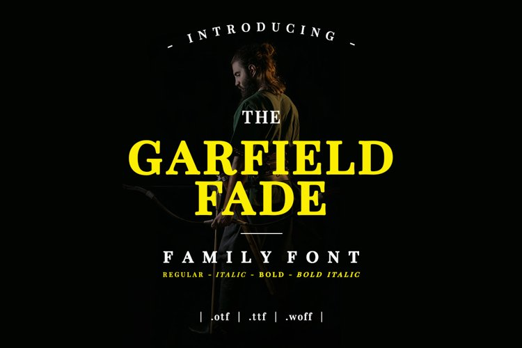 Garfield Fade Family Font example image 1