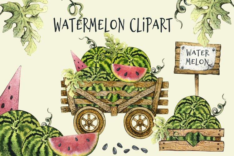 Watercolor Watermelon Clipart png, Summer Juicy Fruit set