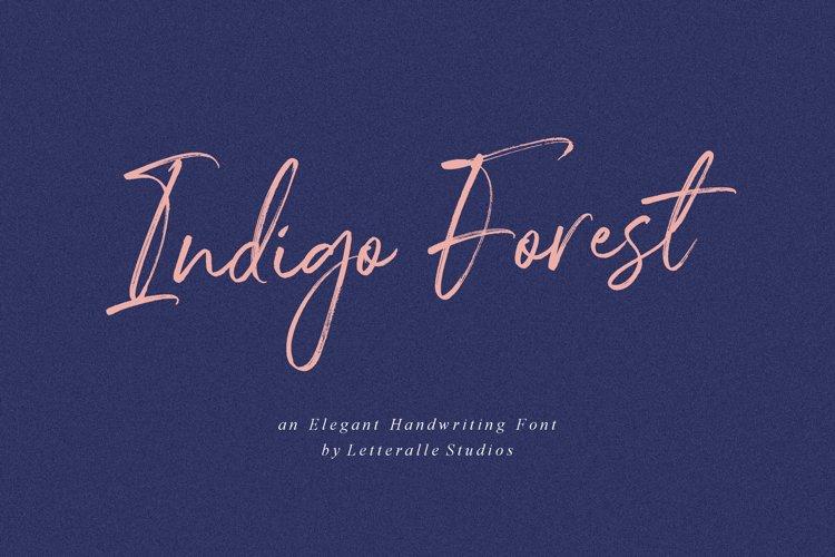 Indigo Forest Handwritten Font example image 1