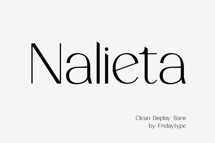 Nalieta - Clean Display Sans example image 1