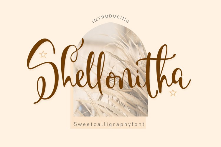Shellonitha example image 1