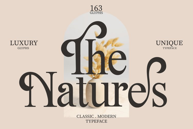 The Natures / Modern Font example image 1