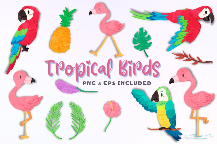 Tropical Birds Watercolor Style Clip Art