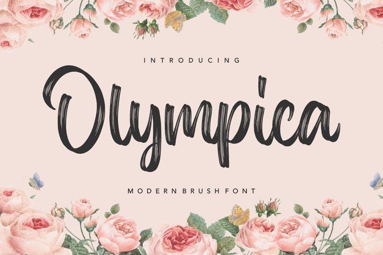 Olympica Modern Brush Font example image 1
