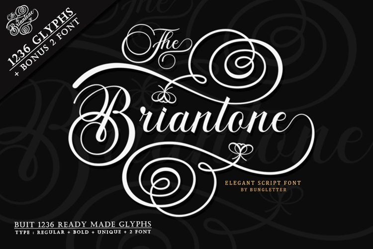 The Briantone - Elegant Script Font example image 1