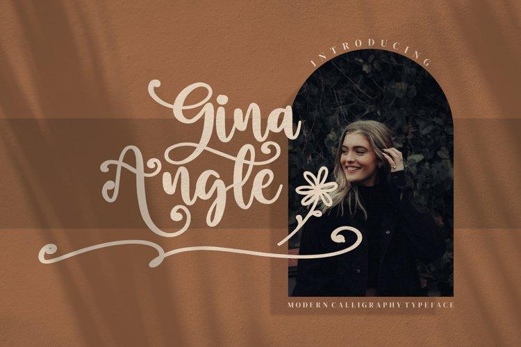 Gina Angle example image 1