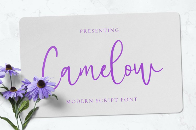 Camelow Font example image 1